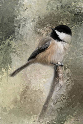 Chickadee Photograph - Ready For Spring Seeds by Jai Johnson