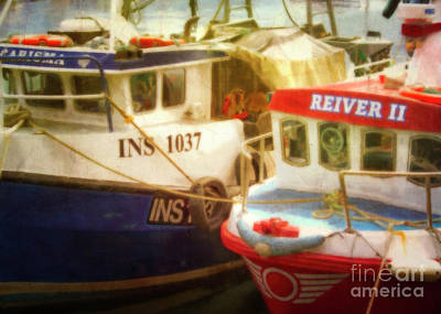 Nautical Animals - Ready in Pittenweem Harbour by Hal Halli