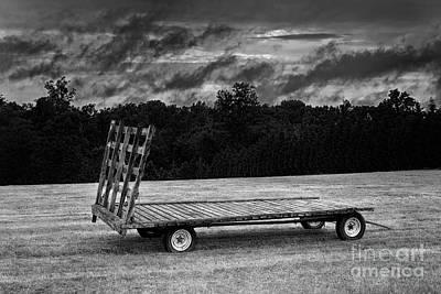 Photograph - Ready by Patrick M Lynch