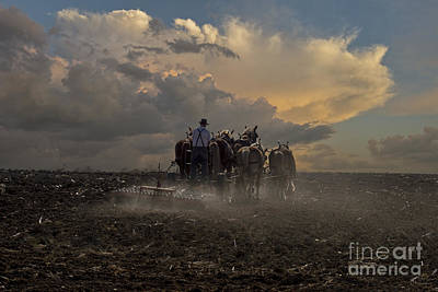 Amish Photograph - Ready The Earth by David Arment