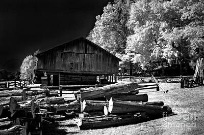 Photograph - Ready To Mill by Paul W Faust - Impressions of Light