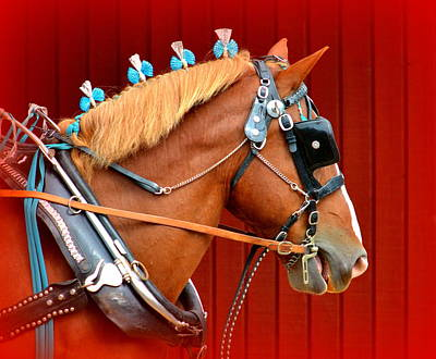 Draft Horses Photograph - Ready To Pull by Lori Seaman