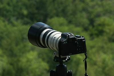 Photograph - Ready To Shoot by Ron Read