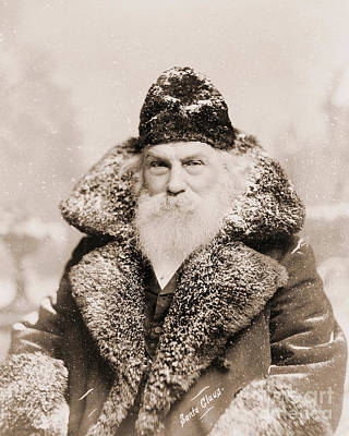 White Beard Photograph - Real Life Santa Claus by American School