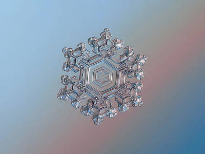 Photograph - Real Snowflake - 05-feb-2018 - 1 by Alexey Kljatov