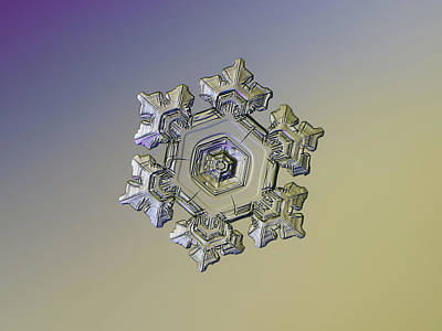 Photograph - Real Snowflake - 05-feb-2018 - 10 Alt by Alexey Kljatov