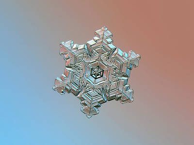 Photograph - Real Snowflake - 05-feb-2018 - 3 by Alexey Kljatov
