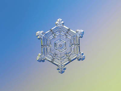 Photograph - Real Snowflake - 05-feb-2018 - 4 Alt by Alexey Kljatov
