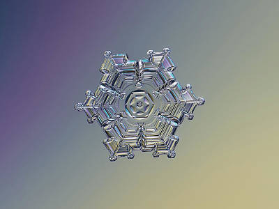 Photograph - Real Snowflake - 05-feb-2018 - 7 Alt by Alexey Kljatov