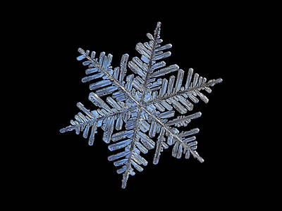 Photograph - Real Snowflake - 2017-02-13 4 Black by Alexey Kljatov