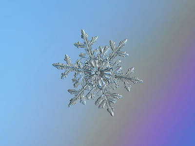 Photograph - Real Snowflake - 21-feb-2018 - 1 by Alexey Kljatov
