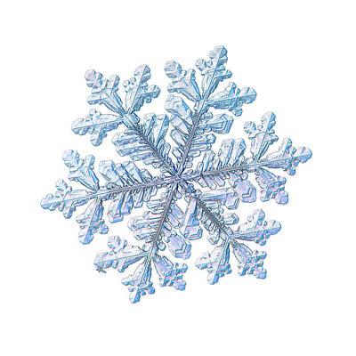Photograph - Real Snowflake - Hyperion White by Alexey Kljatov