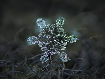 Photograph - Real Snowflake - Slight Asymmetry New by Alexey Kljatov