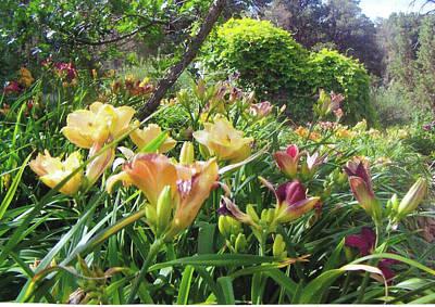 Really Big Bunch Of Lilies Art Print by P Maure Bausch