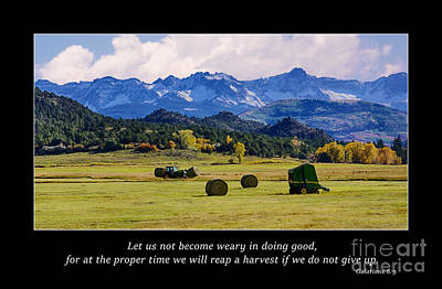 Reap A Harvest Art Print