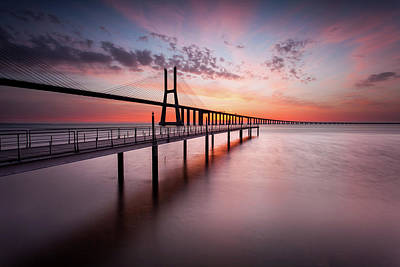 Photograph - Reborn by Jorge Maia