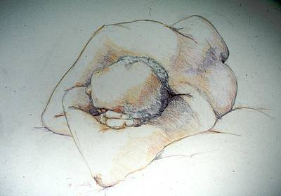 Painting - Reclining Study 3 by Barbara Pease
