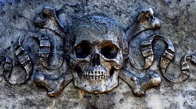 Recoleta Skull Art Print