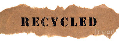 Recycled Art Print by Olivier Le Queinec
