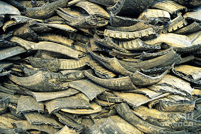 Recycling Old Tires Art Print