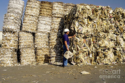 Paper Pulp Photograph - Recycling Worker by Inga Spence