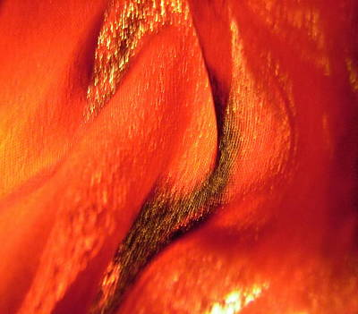 Photograph - Red 108 by Stephanie Moore