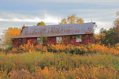 Photograph - Red Abandoned Barn by Angela Murdock