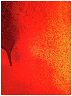 Photograph - Red Abstract Paint Drip by Tony Grider