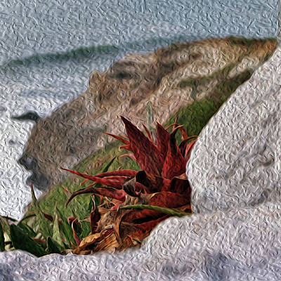 Red Aloe Vera By The Sea Art Print