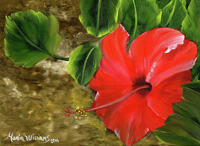 Painting - Red Amapola by Maria Williams