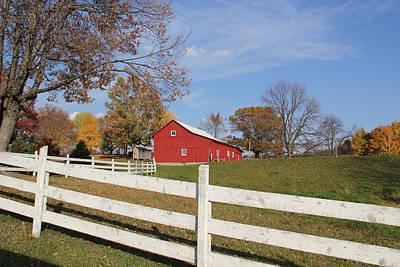 Red Amish Barn Art Print by Donna Bosela