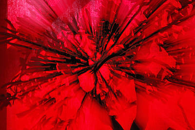 Art Print featuring the photograph Red And Black Explosion by Susan Capuano