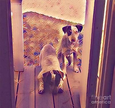Photograph - Red And Blue Heelers by Susan Bordelon