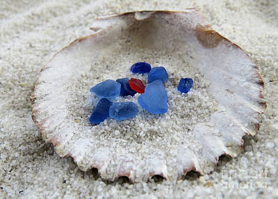 Photograph - Red And Blues by Janice Drew