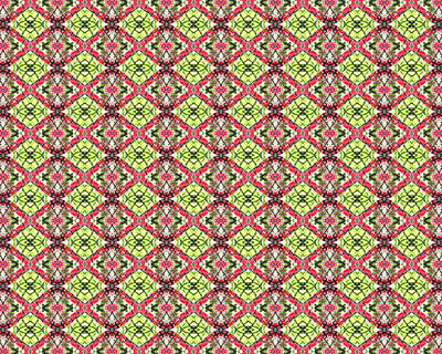 Art Print featuring the digital art Red And Green by Elizabeth Lock