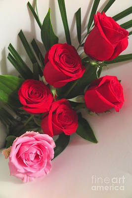 Photograph - Red And Pink Rose Bouquet by Tara Shalton