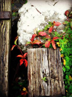 Photograph - Red And Rails by Cyryn Fyrcyd