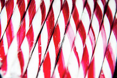 Photograph - Red And White Candy Canes by Helen Northcott