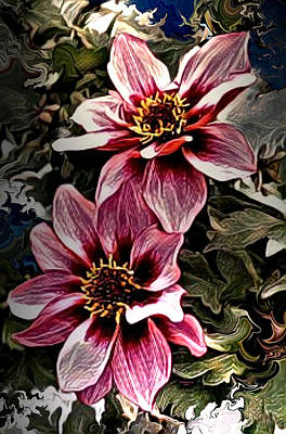 Digital Art - Red And White Flower Blossoms by Artful Oasis