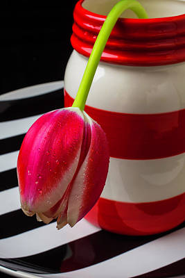 Red And White Jar With Tulip Print by Garry Gay