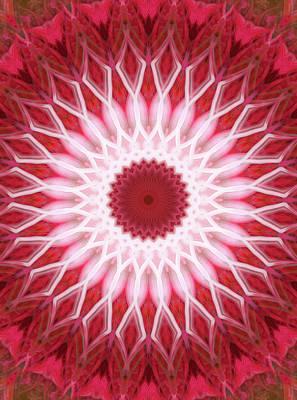 Photograph - Red And White Mandala by Jaroslaw Blaminsky