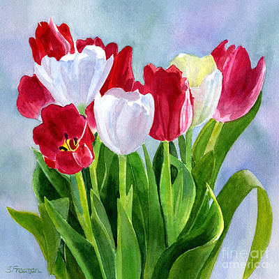 Tulips Watercolor Wall Art - Painting - Red And White Tulip Bouquet by Sharon Freeman