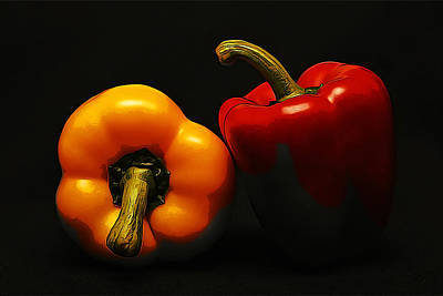 Bell Pepper Painting - Red And Yellow Bell Peppers In The Shadows by Elaine Plesser