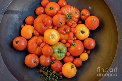 Photograph - Red And Yellow Heirloom Tomatoes by Sharon Foelz