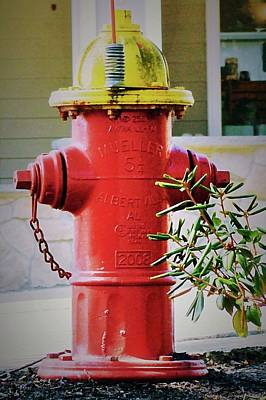 Photograph - Red And Yellow Hydrant by Caroline Stella