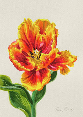 Red And Yellow Parrot Tulip 1 Original