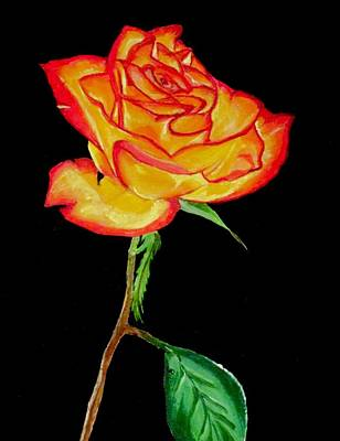 Rose Painting - Red And Yellow Rose by Carol Blackhurst