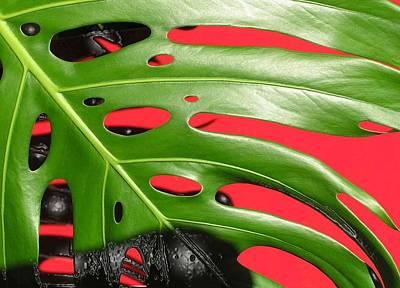 red ang green N1 Art Print by Evguenia Men