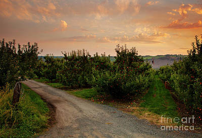 Photograph - Red Apple Lane by Mike Dawson