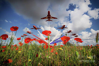 Poppies Field Digital Art - Red Arrows Poppy Fly Past by J Biggadike